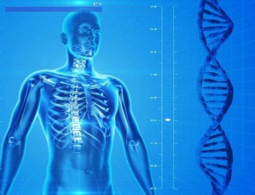 Od celice do organizma, od genotipa do fenotipa: vloga prehrane pri zdravju in bolezni